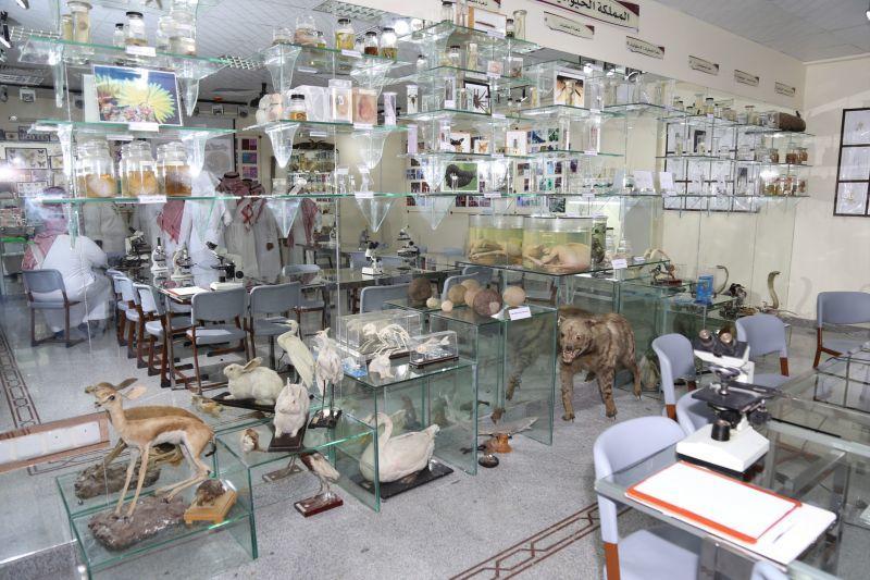 متحف الأحياء